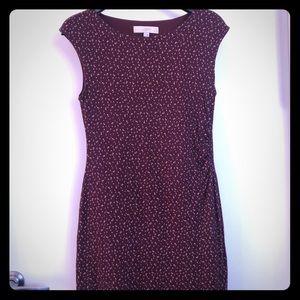 LOFT Garnet/Maroon Dandelion Dress